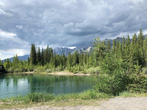 Foto d'estoc gratuïta de arquejar riu, Canadà, canmore, empedrat