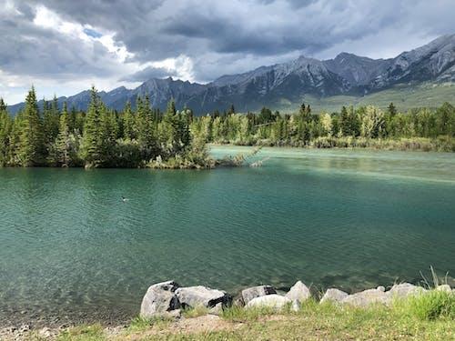 加拿大, 地盤岩, 坎莫尔, 夏天在落基山脉 的 免费素材照片
