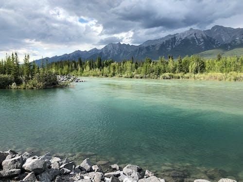 加拿大, 坎莫尔, 夏天在落基山脉, 弓河 的 免费素材照片