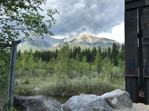 Foto d'estoc gratuïta de aigua, arquejar riu, Canadà, canmore