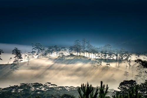 シルエット, 丘, 屋外, 山の無料の写真素材