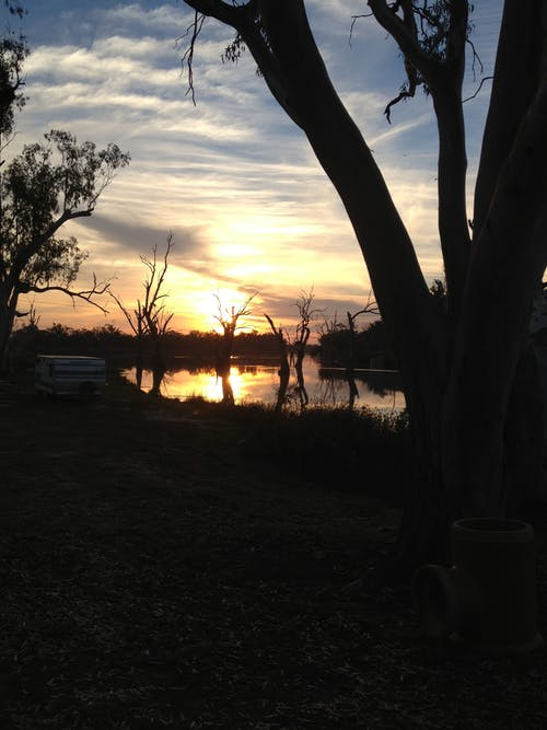 Free stock photo of murray river