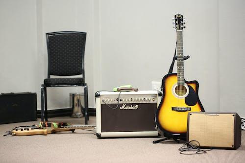 Darmowe zdjęcie z galerii z #bas, #gitara, #gitara basowa, #musical