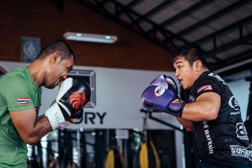 Kostnadsfri bild av boxning, handling, kampsport, människor