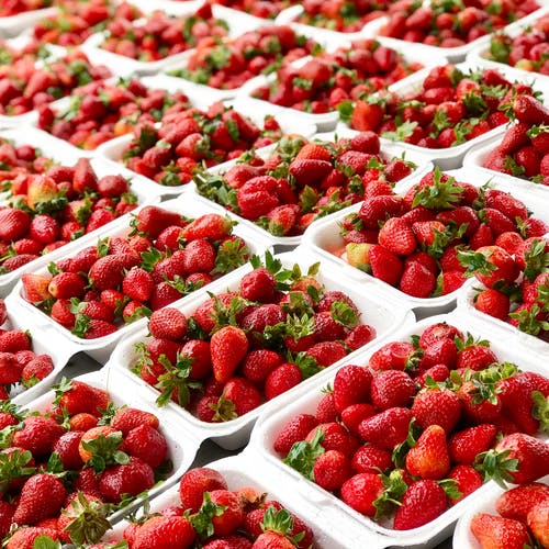 Strawberries in Packaging Containers