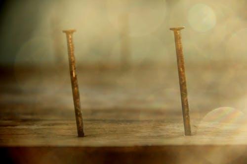 คลังภาพถ่ายฟรี ของ ตะปู