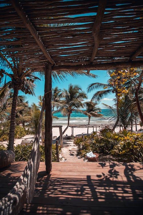 Δωρεάν στοκ φωτογραφιών με la valise, tulum, ακτή, άμμος