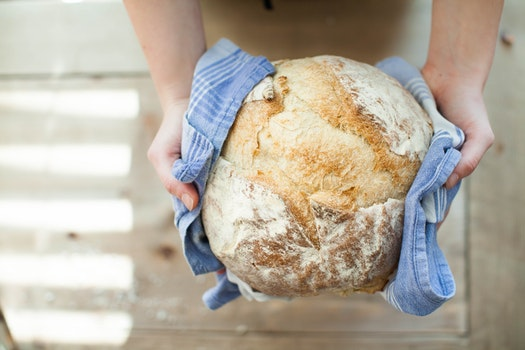 Free stock photo of bread, food, hands, fresh