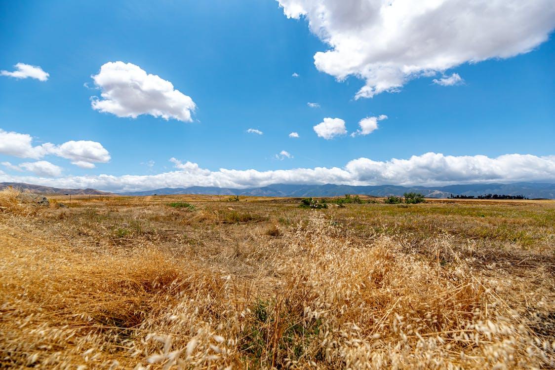 Gratis arkivbilde med nikon d750, vakkert landskap