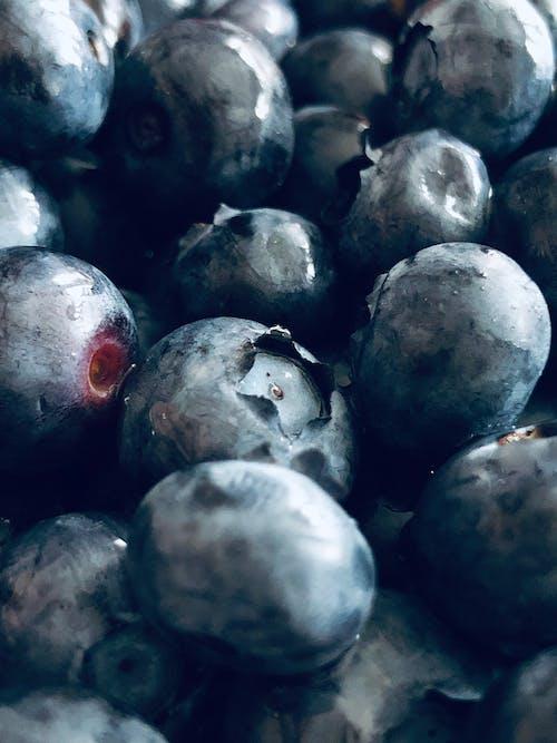 Fotobanka sbezplatnými fotkami na tému bluberries, čerstvé ovocie, čučoriedka, leto