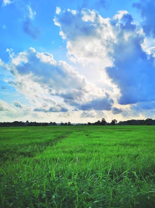 Darmowe zdjęcie z galerii z błękitne niebo, chmury, letnia podróż, piękno natury