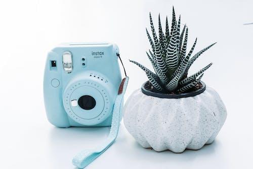 Gratis stockfoto met camera, directe camera, fabriek, fujifilm