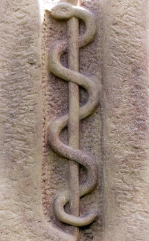 Free stock photo of doctor, medical, symbol, rod