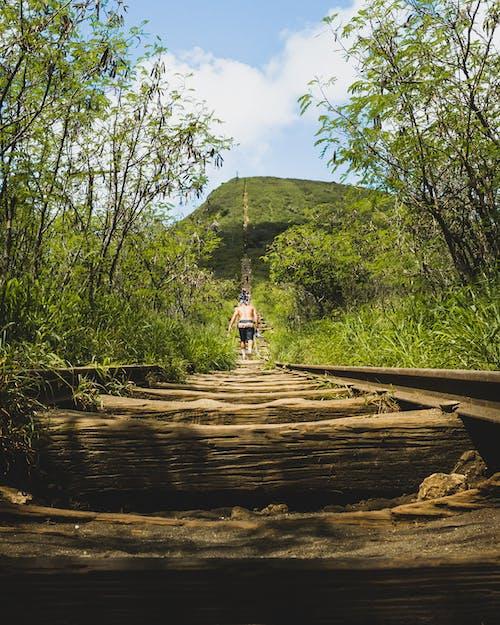Imagine de stoc gratuită din alpinist, cale ferata, drumeție, Hawaii