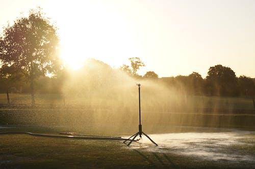 Foto d'estoc gratuïta de aspersor, fumigant, gespa, golf