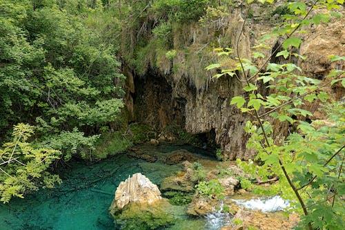 Kostenloses Stock Foto zu berge, höhle, wald