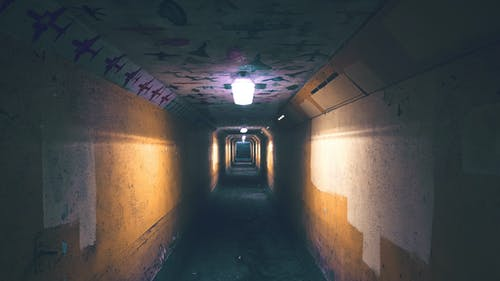 Fotos de stock gratuitas de abajo, abandonado, adentro, arquitectura
