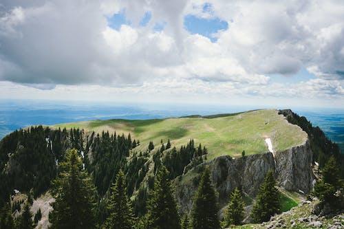 açık hava, arka fon, bakir bölge, çay içeren Ücretsiz stok fotoğraf