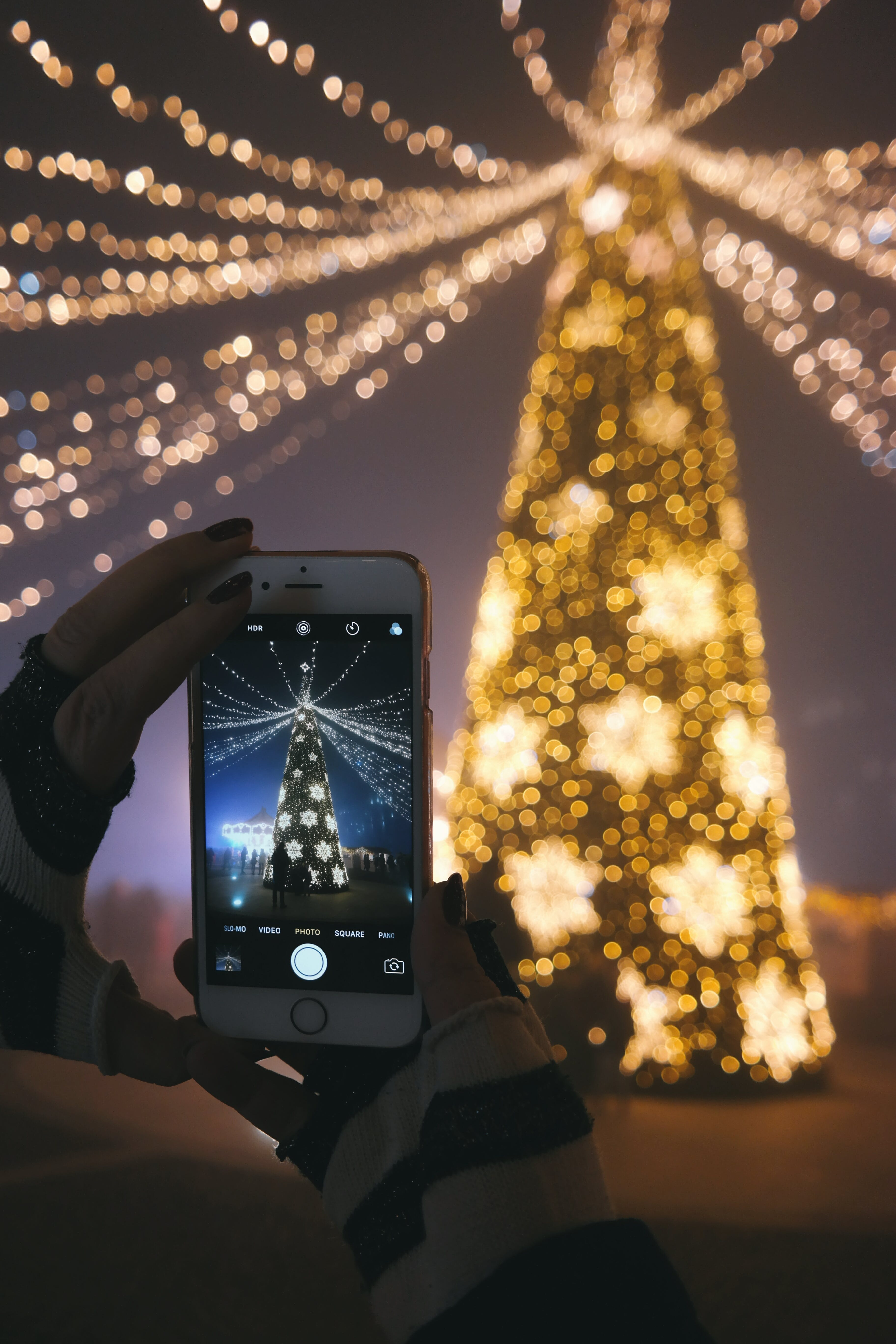 Person Taking Picture of Gold Lighted Tree