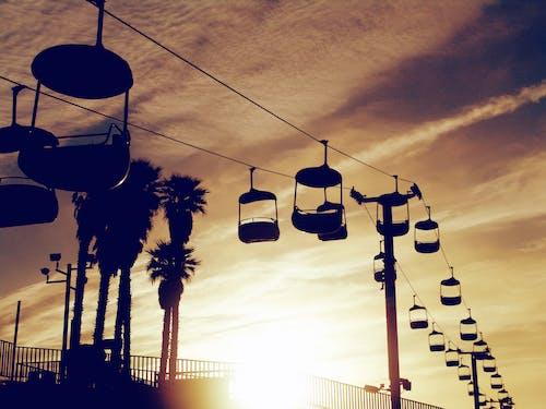 Foto profissional grátis de alvorecer, amanhecer, aurora, carona
