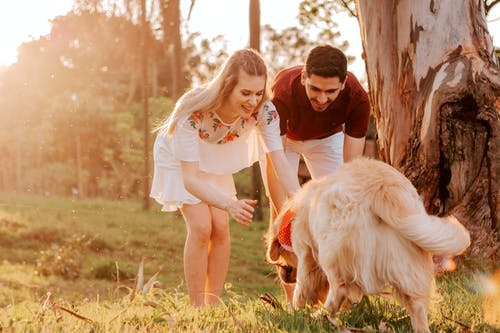 Man And Woman Standing Beside Dog During Golden Hour