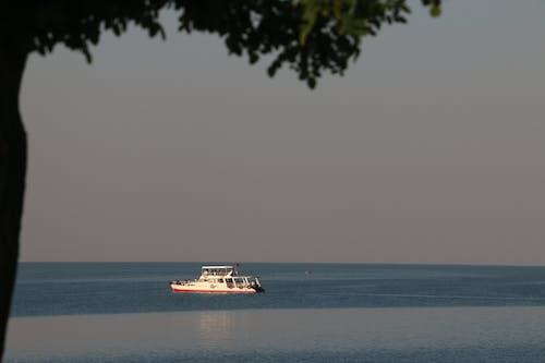 Foto profissional grátis de ağaç, gol, van gölü