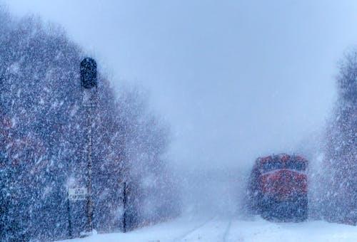 Безкоштовне стокове фото на тему «зима, локомотив, потяг, сніг»