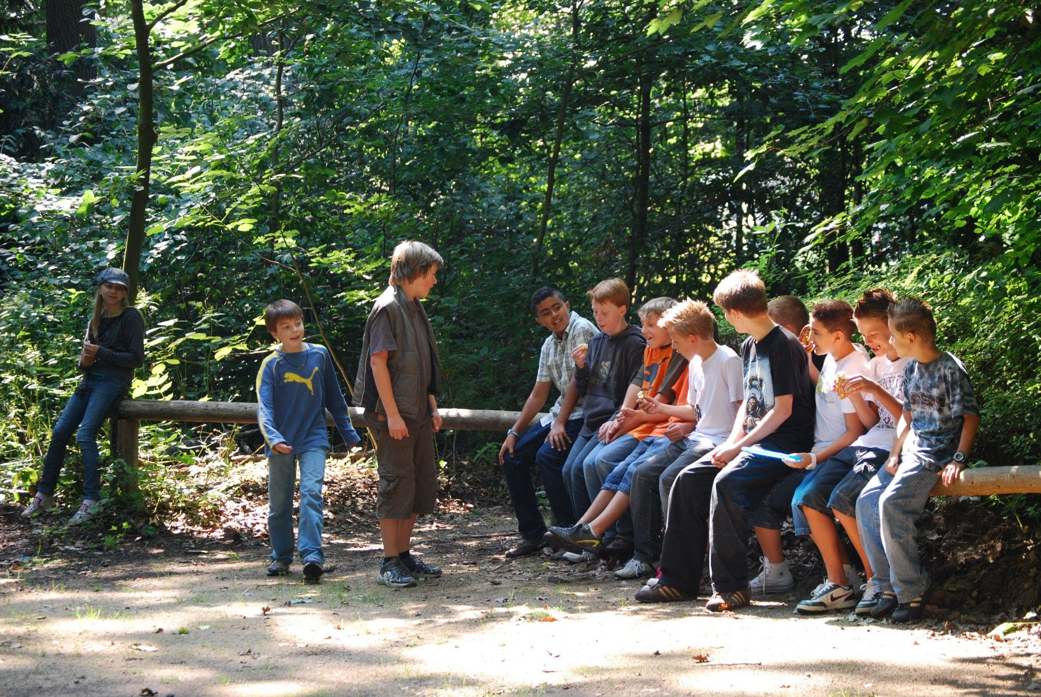 Free stock photo of forest, teenager, group, youth
