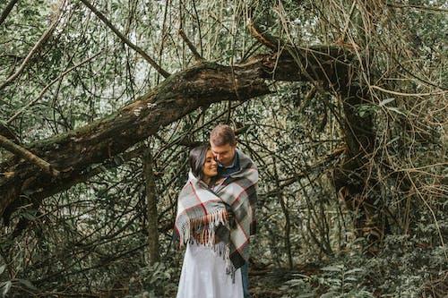 Immagine gratuita di affetto, albero, coppia, donna