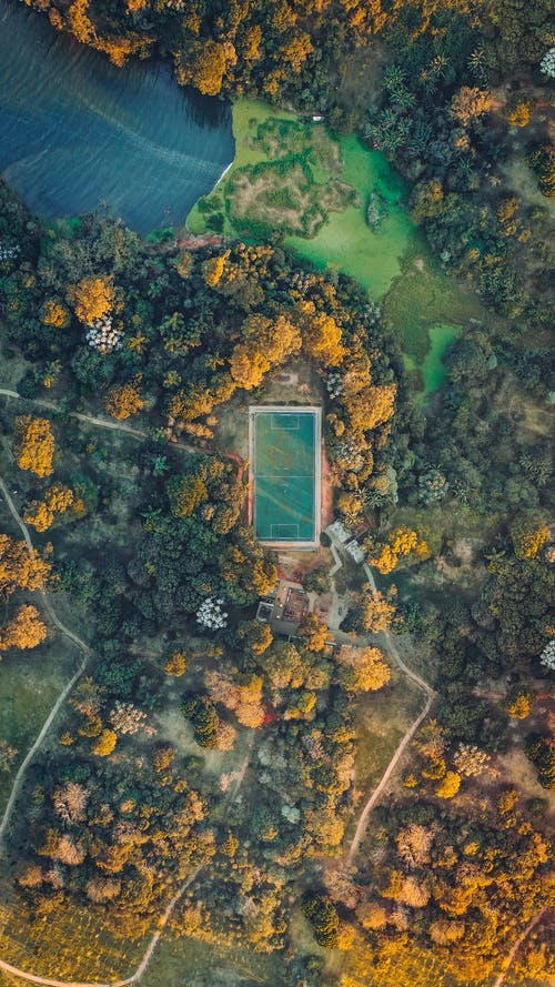 Aerial Photography Basketball Court Surrounded With Trees