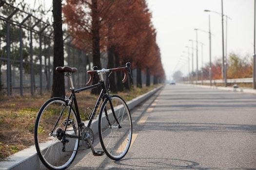 Free stock photo of road, bike, road bike, cycles