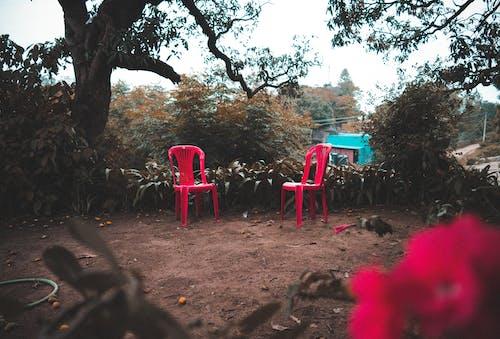 Бесплатное стоковое фото с боке, выборочный фокус, голубой, два стула