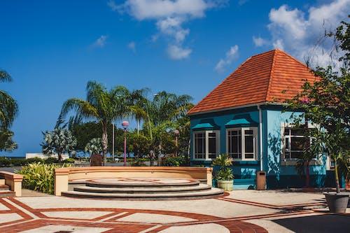五顏六色的房子, 加勒比海, 巴巴多斯, 鵜鶘市場 的 免費圖庫相片
