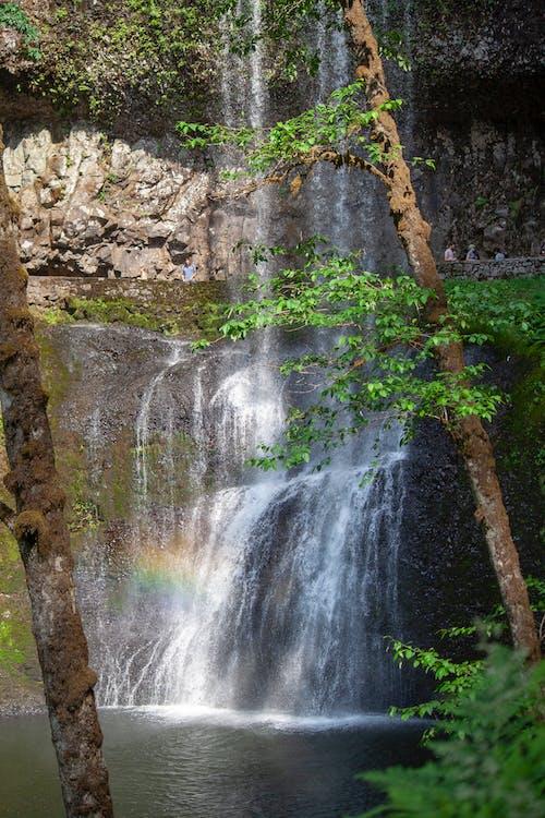 Gratis stockfoto met h2o, regenboog, watervallen, zeldzaam