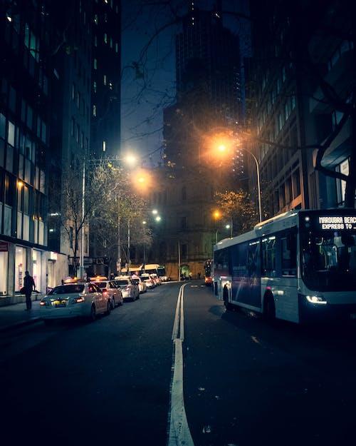 Free stock photo of street, sydney