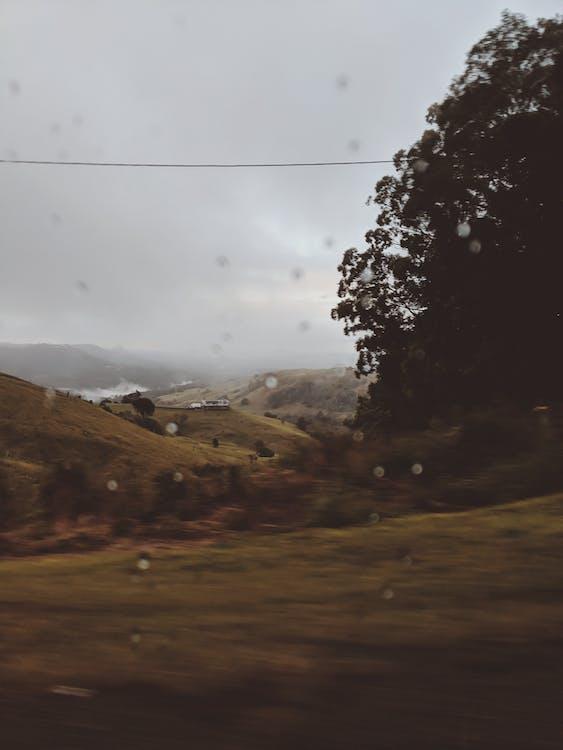 đồi, ngày mưa, núi