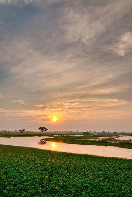 Foto stok gratis agrikultura, alam, bidang, danau