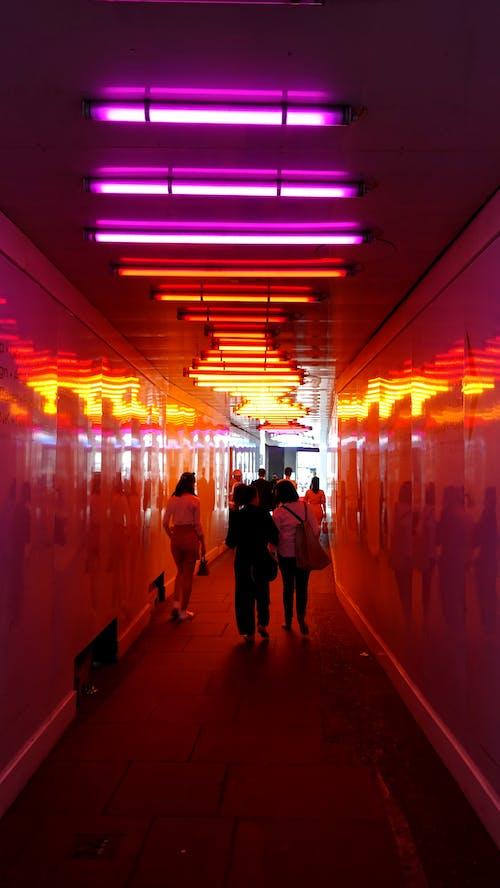 Gratis stockfoto met doorgang, fluorescerende, lampen, mensen