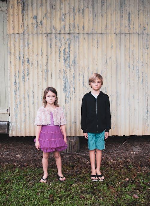 Foto profissional grátis de balança, cor-de-rosa, corragado, crianças
