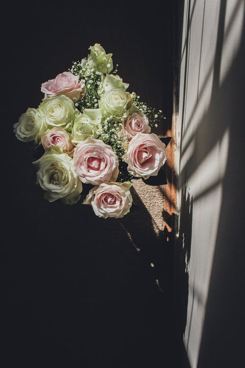 光與影, 喜怒無常, 玫瑰, 陰影 的 免費圖庫相片