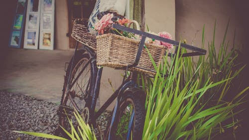 Gratis lagerfoto af blomster, container, cykel, gade