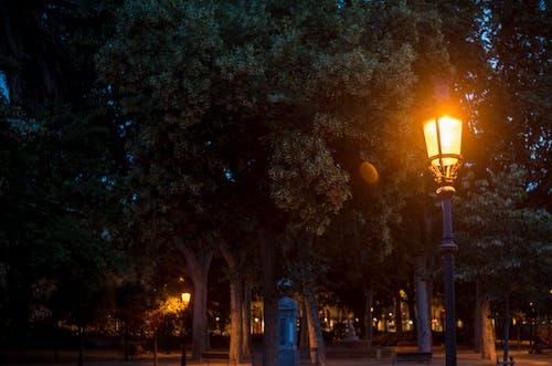 Безкоштовне стокове фото на тему «Захід сонця, легкий, ліхтар, міський парк»