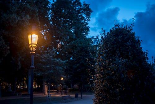 Безкоштовне стокове фото на тему «farol, вогні міста, міський парк, парк»