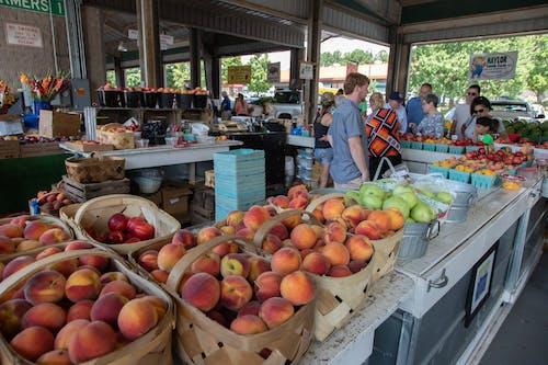 Fotobanka sbezplatnými fotkami na tému agbiopix, farmársky trh peach day, poľnohospodárstvo, produkcia