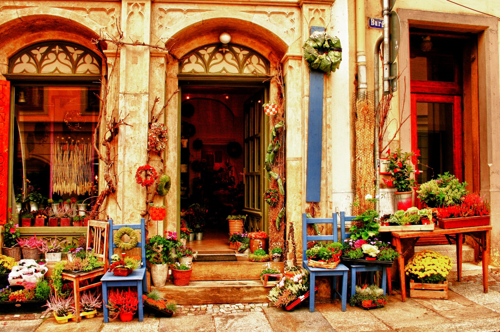 Free stock photo of hdr, flower shop, meissen impression
