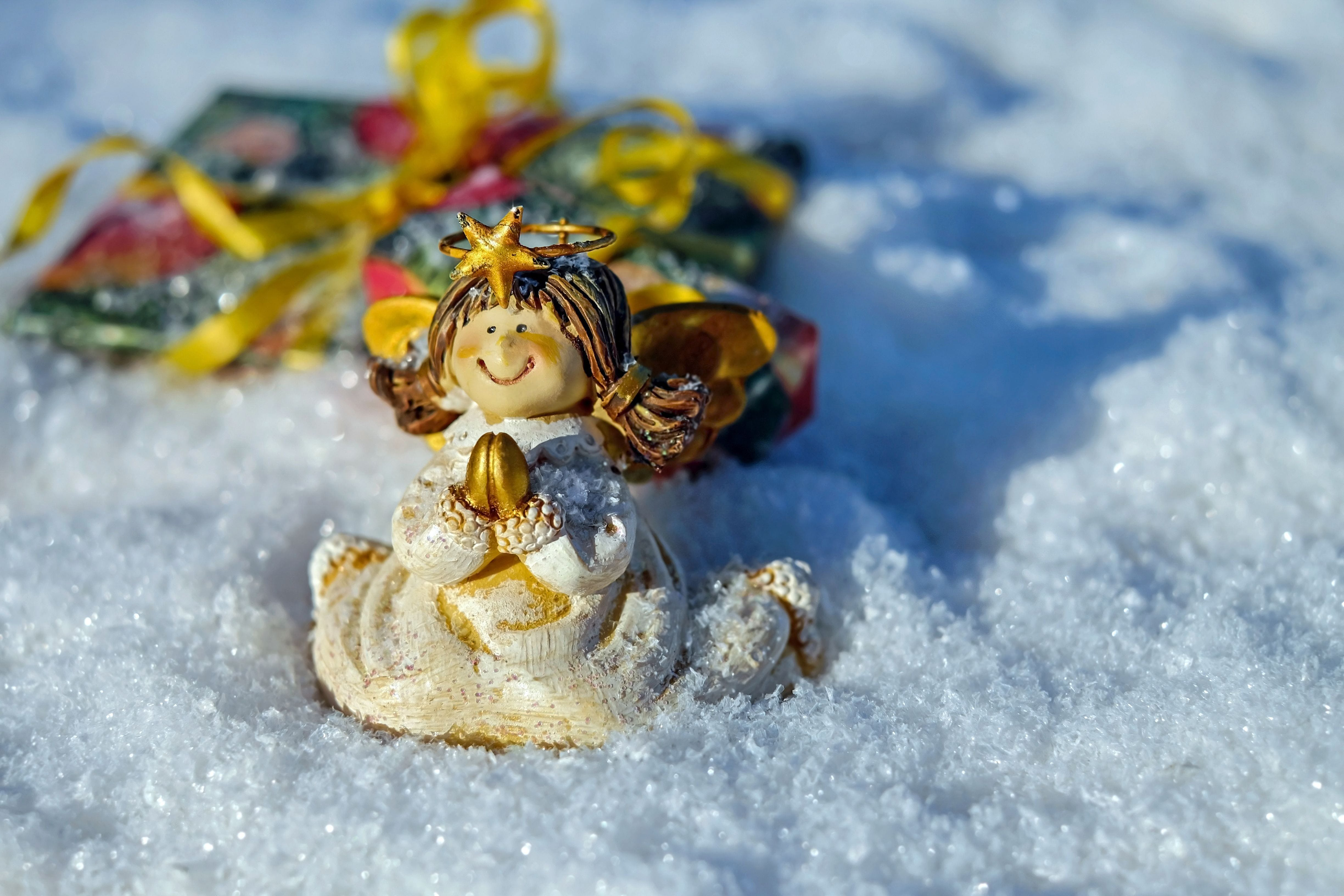 Free stock photo of cold, snow, festival, winter