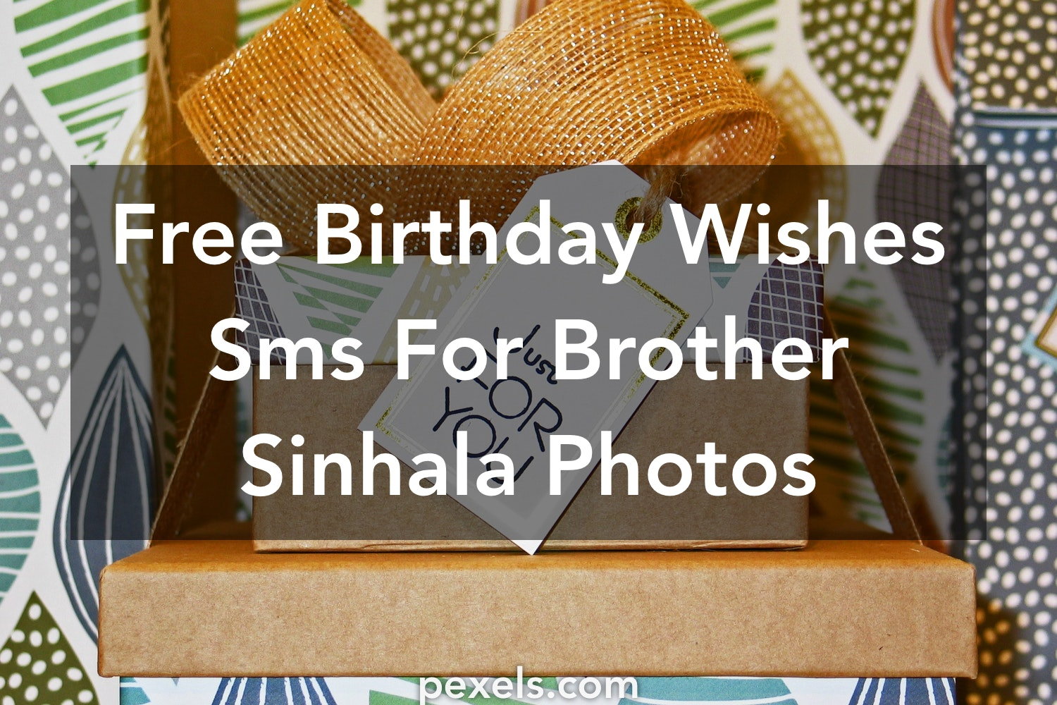 200 Amazing Birthday Wishes Sms For Brother Sinhala Photos Pexels Free Stock