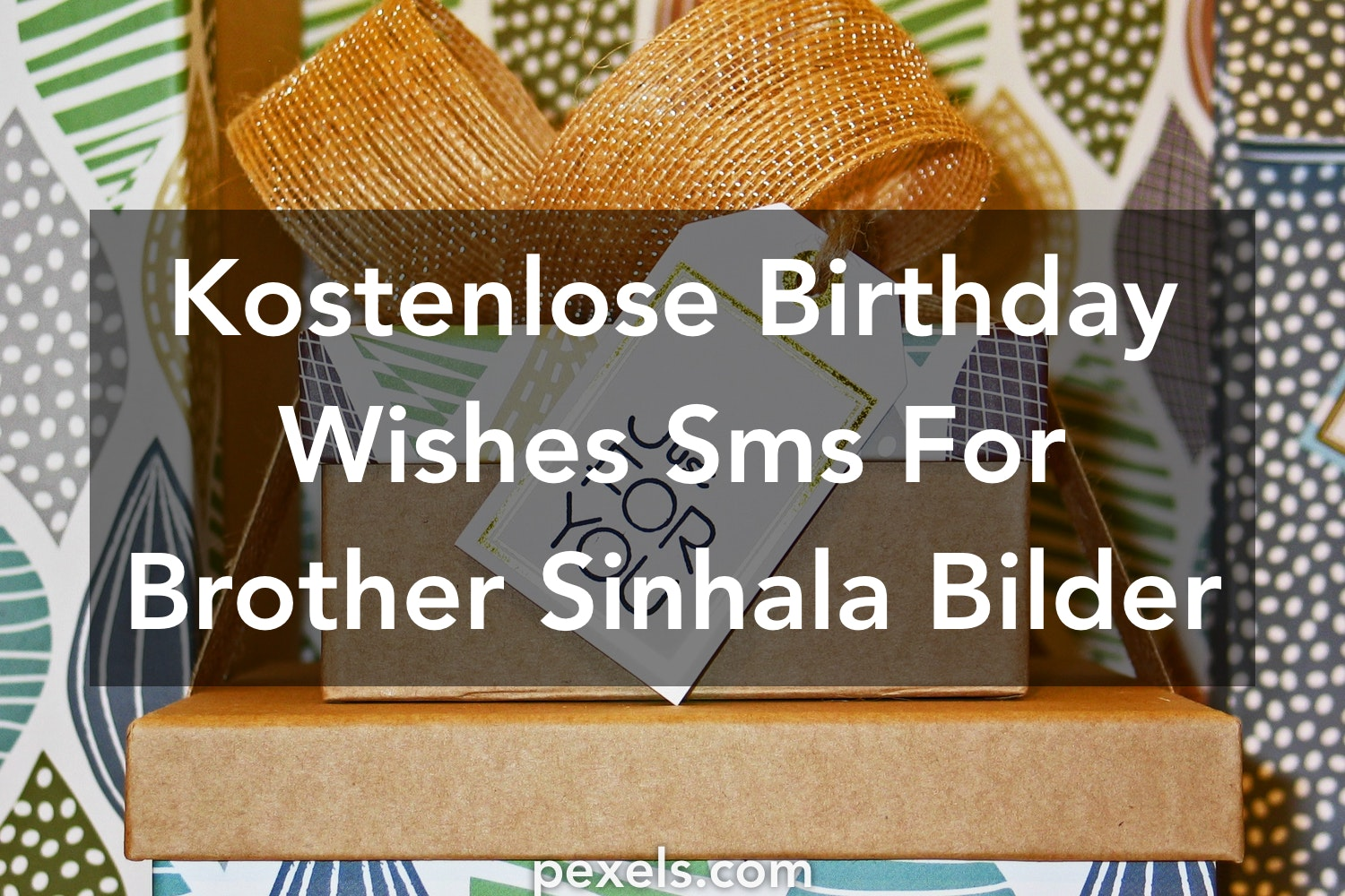 200 Birthday Wishes Sms For Brother Sinhala Fotos Pexels Kostenlose Stock