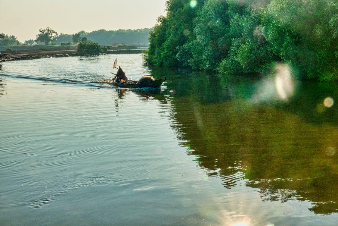 adult, boat, canoe