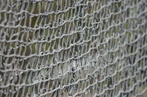 Ingyenes stockfotó a háló, halászat, halászháló, háló témában
